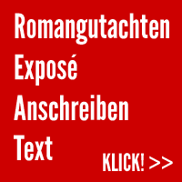 Romagutachten: Exposé, Anschreiben, Text, Leseprobe von Stephan Waldscheidt & schriftzeit.de